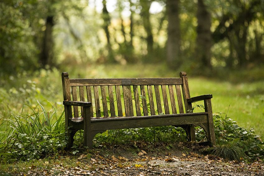 How can I find out if I can have a green burial or funeral home in my area?
